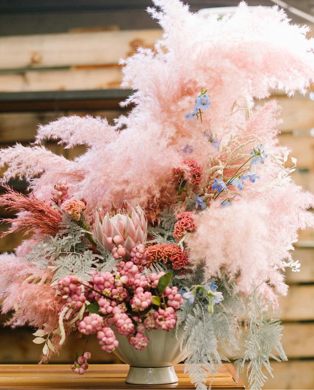Pink pampas from Of The Flowers